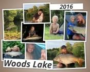 Woods Lake 2016